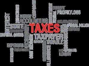 דוח שנתי למס הכנסה